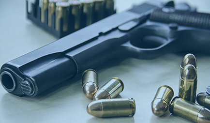 Firearm Legal Services